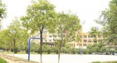 武汉助产学校篮球场